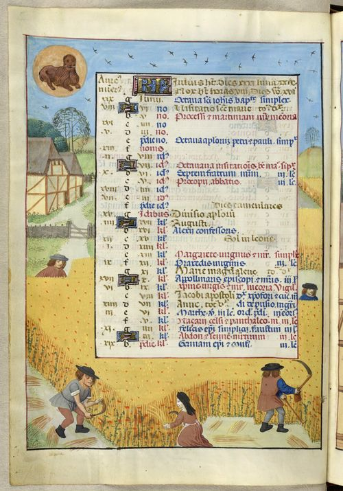 A page from the Isabella Breviary, showing the calendar for July, with an illustration of labourers cutting grain with their sickles for the harvest.