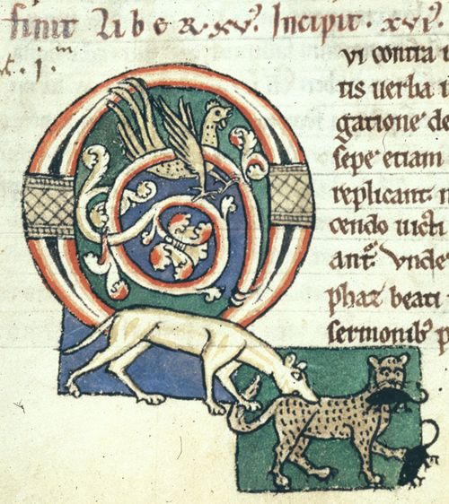 A detail from a 12th-century manuscript, showing a decorated initial and an illustration of a dog catching a cat catching mice.