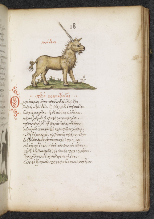 A page from a 16th-century manuscript in Greek, showing an illustration of a unicorn.
