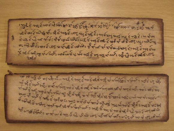 Folios 8 and 9 of the Ahom manuscript Or.2925 (British Museum foliation)