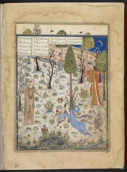 Prince Humay and Azar Afruz find Bihzad drunk, sleeping under a cypress tree (Add.18113, f.3v)