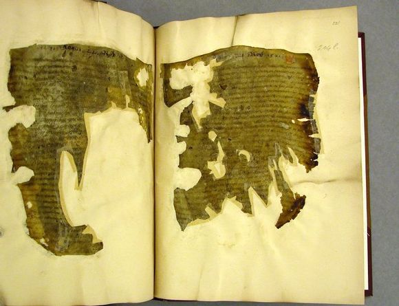 The partial leaves of a fire-damaged manuscript inlaid upon two leaves of a newer book. The pages, which are a mottled brown colour, stand out from the cream coloured sheets. The parchment resembles cartography in the cuts and indents. The pulling of the parchment has led to cockling of the paper underneath.