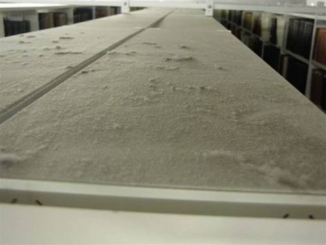 A picture looking down from a high cream-coloured metal shelf, showing the dust that has built up to a substantial degree, covering the flat top of the shelf. To the left and right of the shelf can be seen hard-cover books of mostly larger size, on the adjoining shelves.