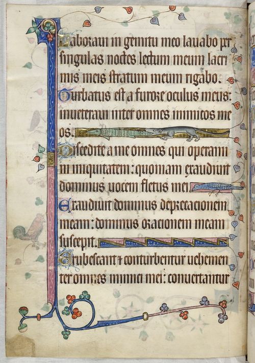 A decorated page from the Luttrell Psalter.