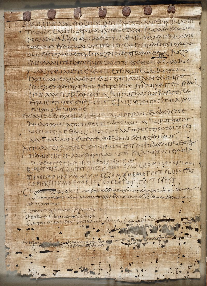 Papyrus_229_f001r