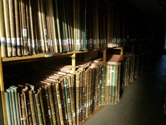 A large amount of thin books bound in green, which have faded to shades of green and brown, sit on bookshelves. These shelves are being hit by direct, bright sunlight.