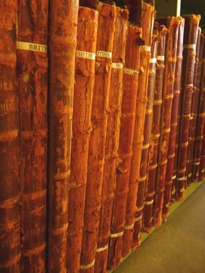 A row of books on a bottom shelf showing rust-coloured spines which are severely degrading due to red rot--the spines appear flaky.