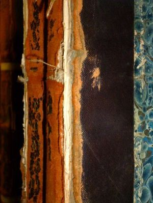 A closeup of a spine with flaky red rot leather. A small bit of blue marbled paper is also visible.