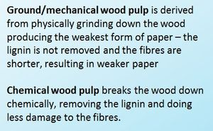 Black text on a blue background which reads, Ground/mechanical wood pulp is derived from physically grinding down the wood producing the weakest form of paper - the lignin is not removed and the fibres are shorter, resulting in weaker paper. Chemical wood pulp breaks the wood down chemically, removing the lignin and doing less damage to the fibres.