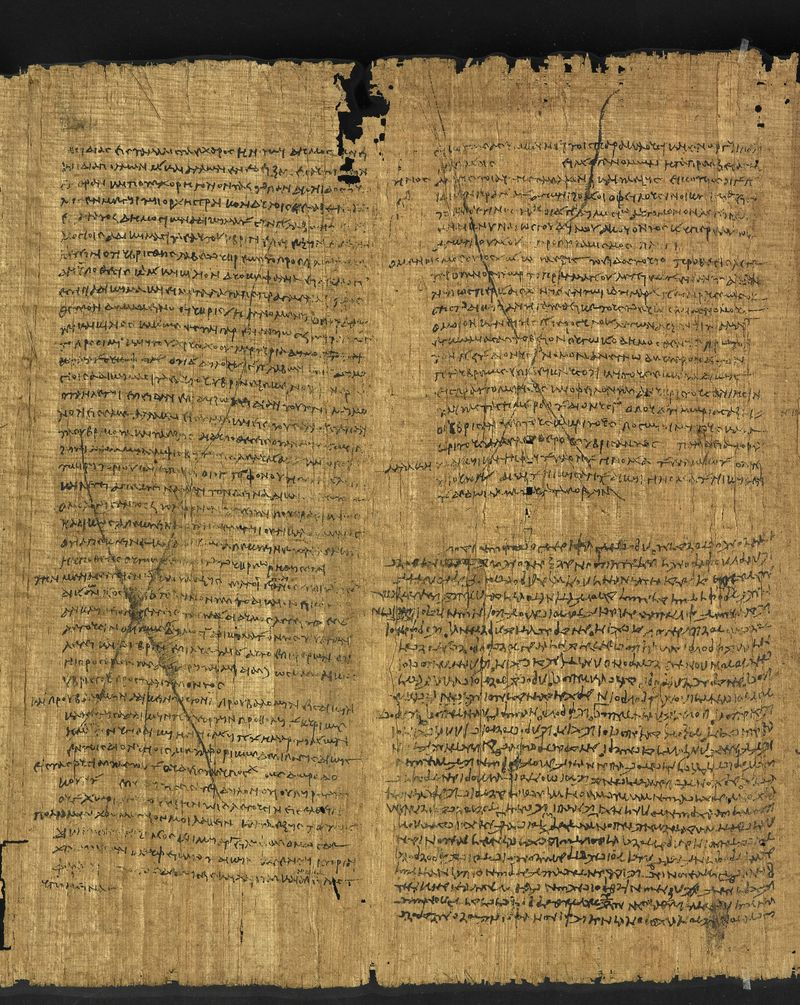 Papyrus_131_f002cv