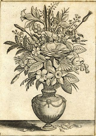 Adriaen Collaert, Florilegium, published by Philips Galle, Antwerp, 1590.  555.d.23.(3.), pl. 3