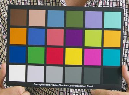 A person holds a colour chart in front of their chest. The chart fills the photo except for their hands and some surrounding areas of their black and white shirt. The chart is a black piece of card covered with 24 squares of bright colours, laid out horizontally in four rows of six. It is roughly 30cm x 20cm wide