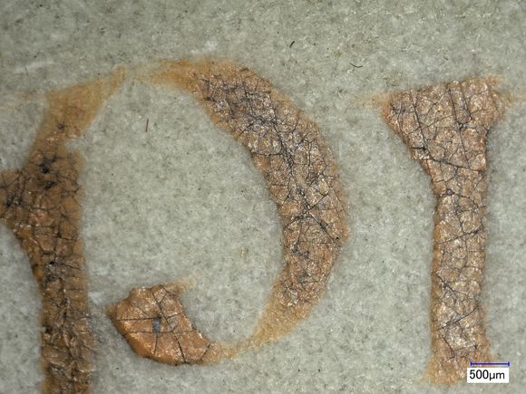 """A close-up of two of the red letters (""""p"""" and """"I"""") at 50x magnification. Under magnification the pigment appears yellow rather than red and both letters are covered with small cracks. The parchment background is grey-white and has a rough texture."""