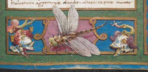 A detail from a 15th-century manuscript, showing a decorated border containing a dragonfly.