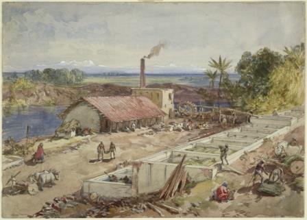 Bengal indigo factory