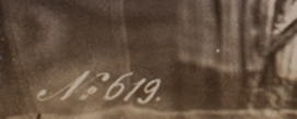 Close up of the identifying number of the photograph. In this case it is 619.