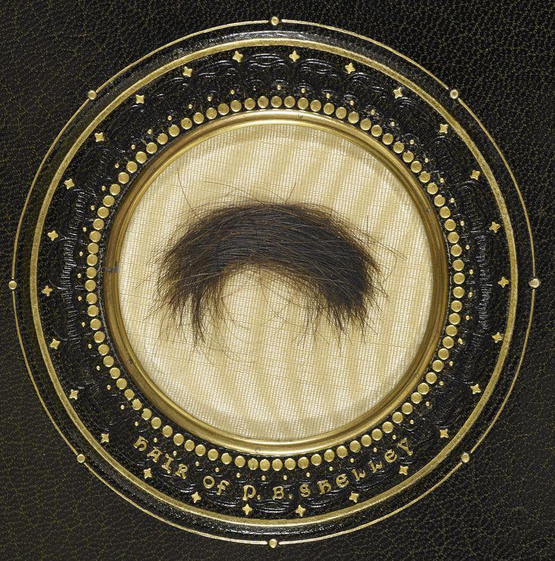 Hair of PB Shelley