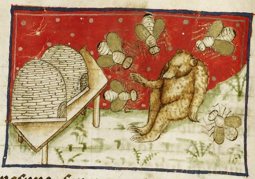 A detail from a medieval manuscript, showing an illustration of bees protecting their hives from a bear.