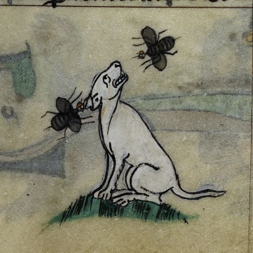 A detail from the Maastricht Hours, showing an illustration of a dog being bothered by two flies.