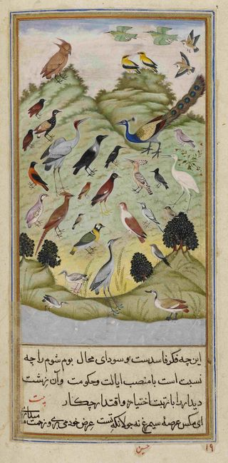 The crow deciding whether the owl should lead the assembly of birds. A miniature painting from Anvar-i Suhayli, a version of the Kalila va Dimna fables, India, 1610–11. Add. Or. 18579 f.210v.