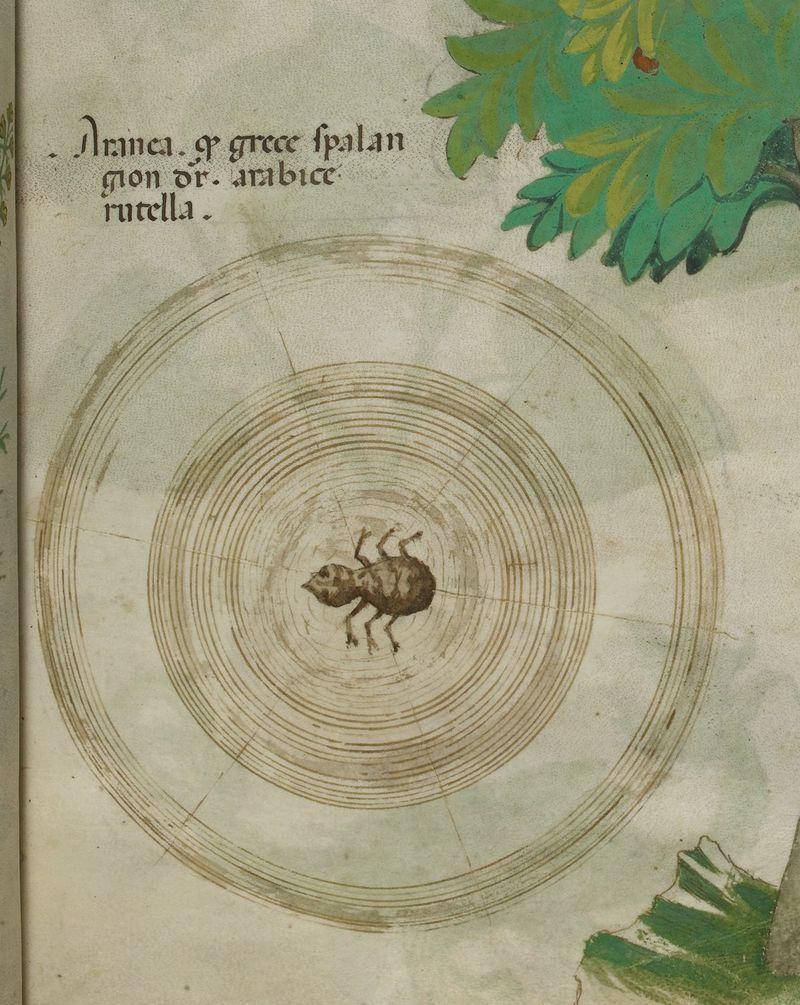 Sloane MS 4016 f. 6r c13578-09b