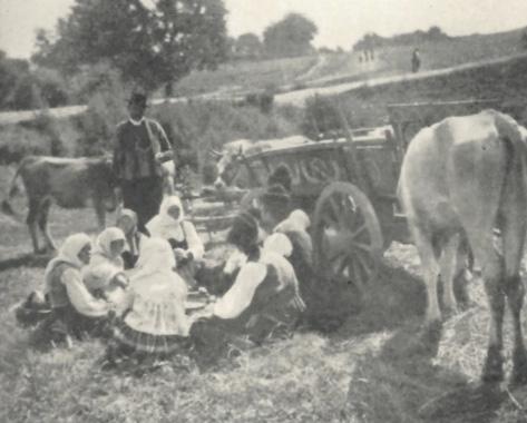 Serbia Women resting