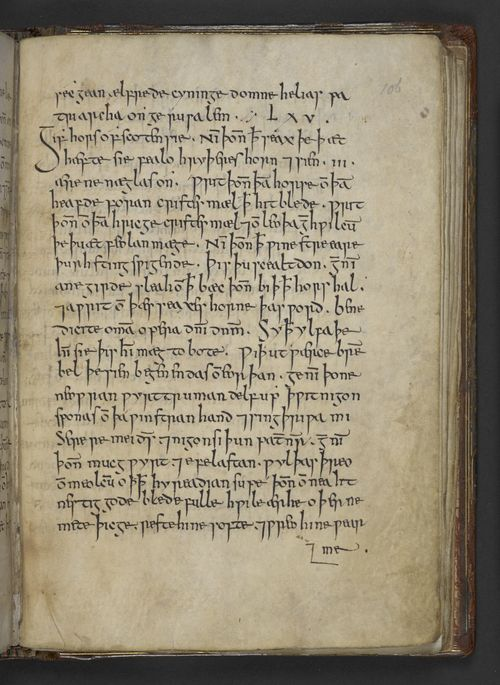 A page from Bald's Leechbook, showing Old English charms that possibly mention elves.