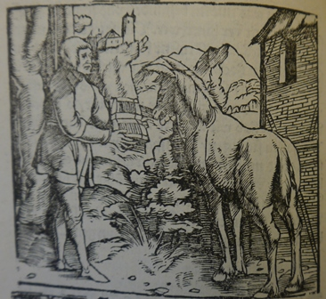 Till showing a book to a donkey