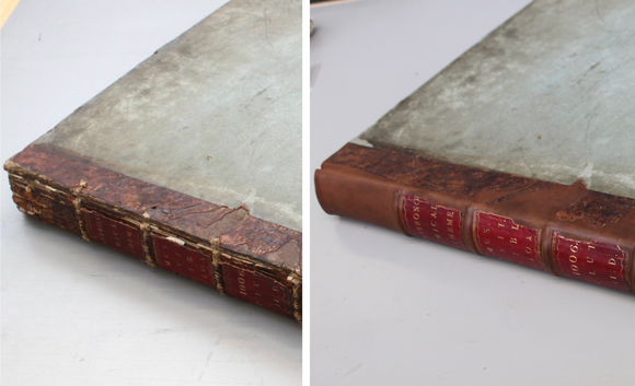 Two close-up images of the spine before and after conservation. Before treatment, the spine's leather is cracked and degraded.