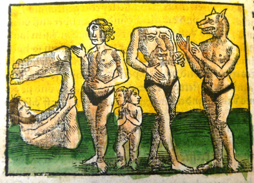 Fantastic beings Cosmographia 1297m6
