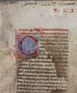 A close-up images of a page showing text in red and black, with a decorative C drawing in red and blue.