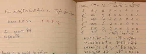 Detail from Mclaren's laboratory notebook dated 1968-1976
