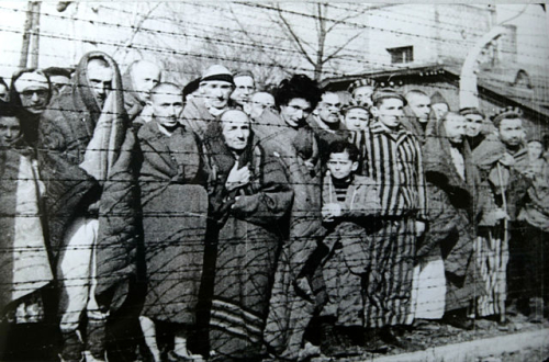 Photograph of prisoners at Auschwitz-Birkenau during liberation