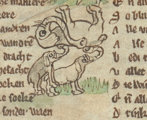 Add MS 11390 elephants