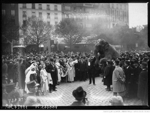 9 27-4-22_couronnement_de_la_Reine_[...]Agence_Rol