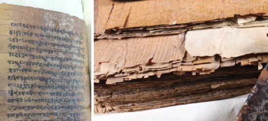 Two images side by side. The left hand image shows a portion of text with white blooming and delamination. The second image is a close up of the page leaves, showing the tears and cracks running in from the outer edge, damage caused by turning the brittle pages.