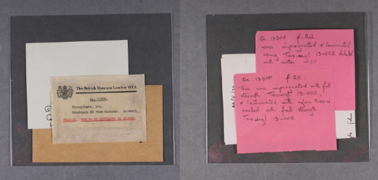 Adhesive labels and condition reports related to the manuscript. The first image displays the original British Museum card record, along with two pink handwritten cards, describing the item.