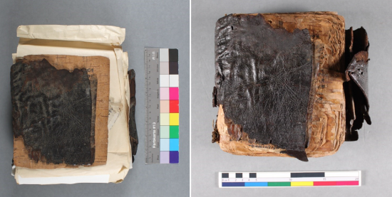 Before and after treatment of the Birch-bark manuscript, with a colored rule scale alongside.