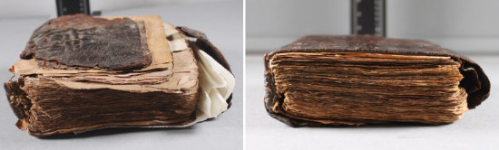 Before and after treatment as shown from the top of the manuscript, lying on its side.