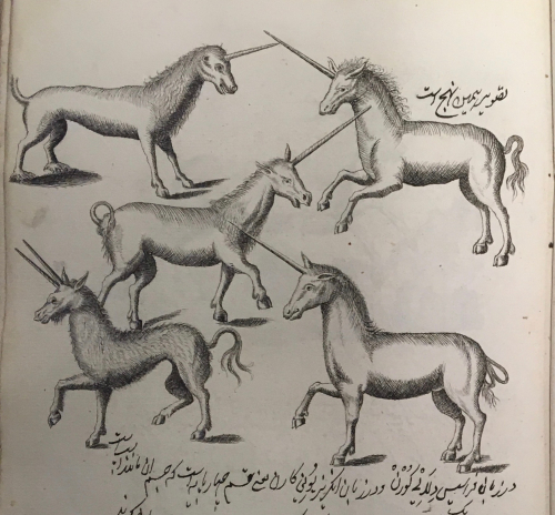IO Islamic 1516_f99r