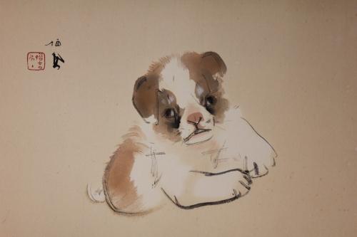 Fig. 1 puppy