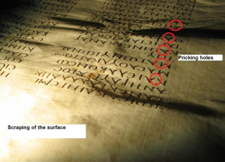 An image of the Codex Sinaiticus as viewed from the top of the page looking down, under raking light conditions. The light has revealed the scraping of the surface of the parchment. The image also shows pricking holes, circled in red, which was done as an aide for ruling the page as an aide for the scribes.