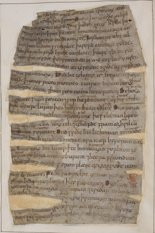 A page from an 11th-century copy of Gregory the Great's Dialogues, translated into Old English.