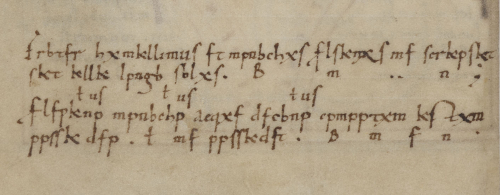 A detail from a medieval manuscript, showing the encrypted text of a scribal colophon.