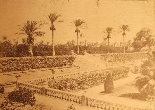 Black-and-white photgraph of the gardens of the Villa Antoniadis