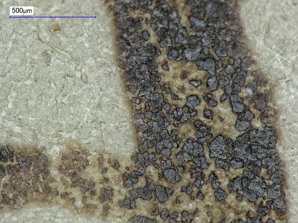 Yet a closer look at the ink loss. At this level of magnification, the ink which is left looks like rocks or ground coffee beans.