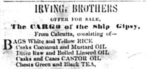 Advert -'IRVING BROTHERS OFFER FOR SALE'  Royal Gazette  3 January 1856