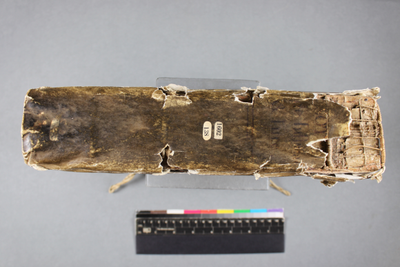 The book spine before treatment--there are areas of loss with much of the spine being gone on the right side.