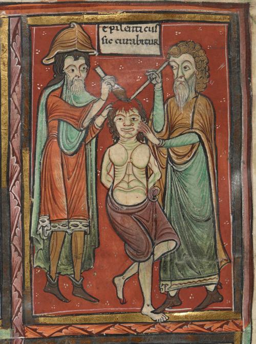 Image result for medieval manuscript medicine doctor