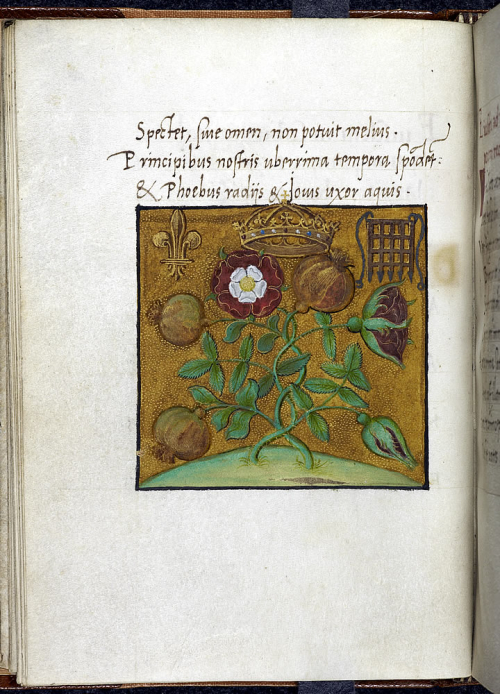 Cotton Titus D IV f12v